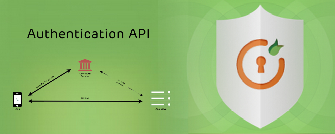 Authentication API development Services